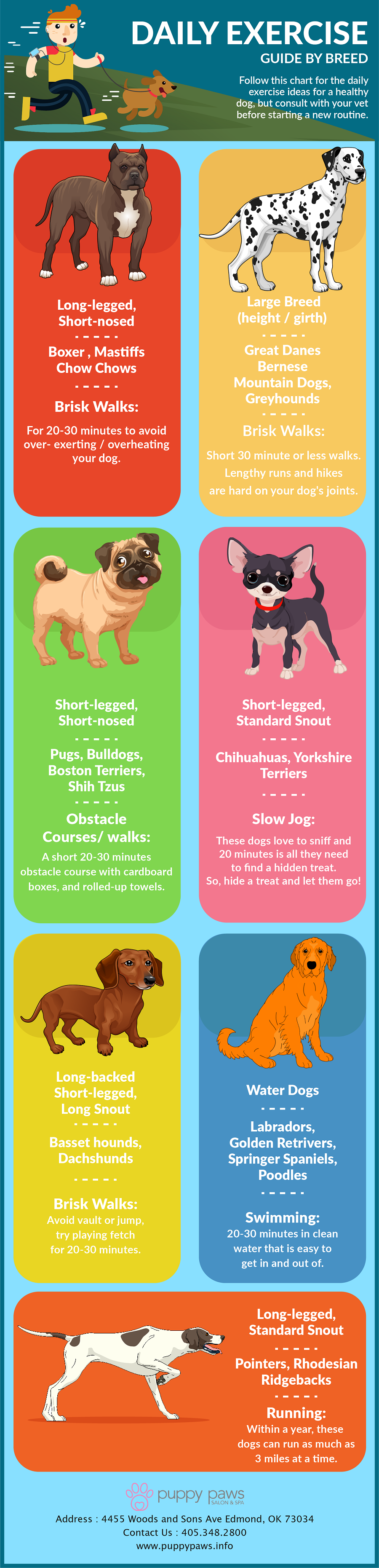 Daily Exercise Guide By Breed
