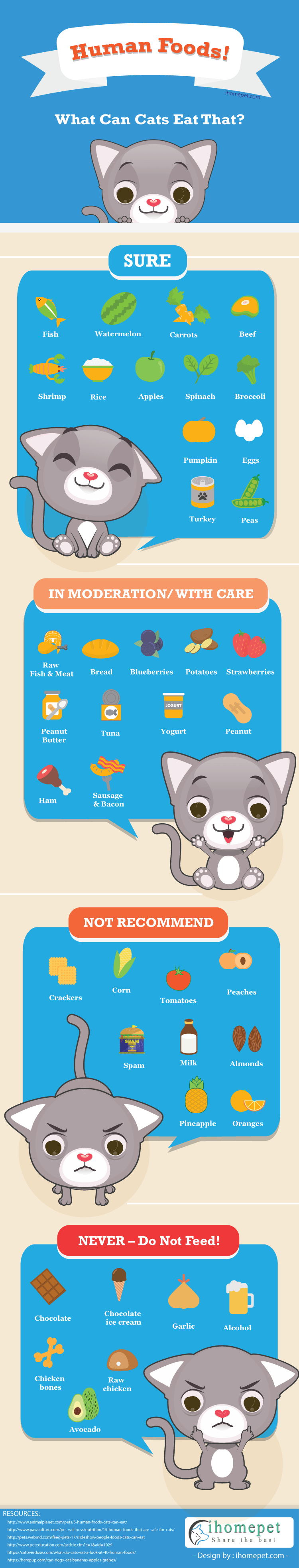 What Human Foods Can Cats Eat?