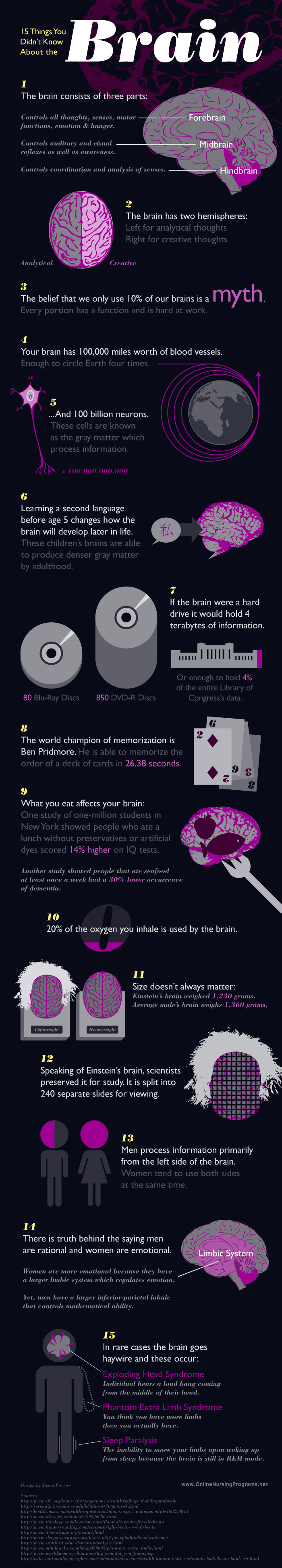 Things You Didn't Know About The Brain