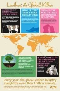 Leather- A Global Animal Killer