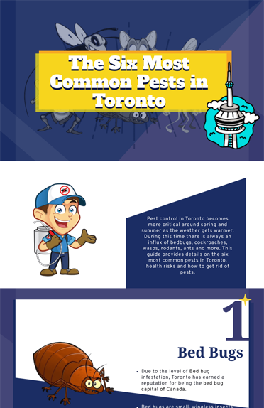 Learn About the Most Common Pests in Toronto