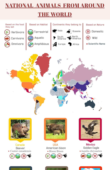 National Animals from Around the World